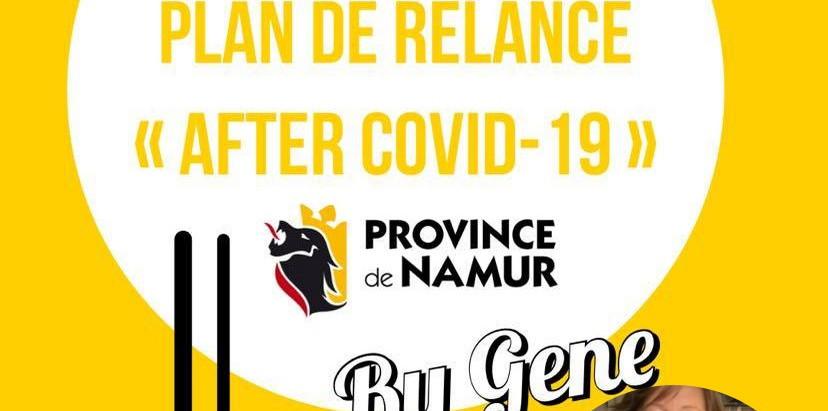 Les 12 Mesures « After-Covid-19 » de la Province de Namur
