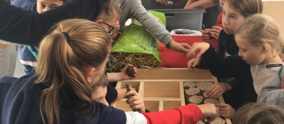 """6 raisons d'inscrire vos bambins à """"Place aux Enfants"""" 2019"""