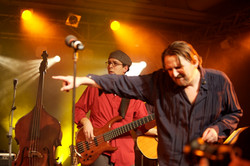 The One Night Band live @ Stadthalle