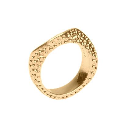 Lithop Ridge Ring | Gold