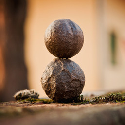 tree-nature-rock-person-wood-photography