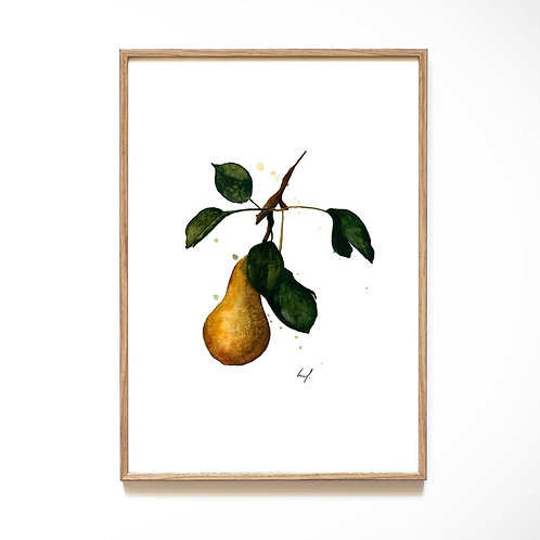 Leo La Douce - Pear