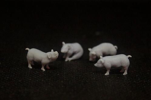 Pigs (4 pack)