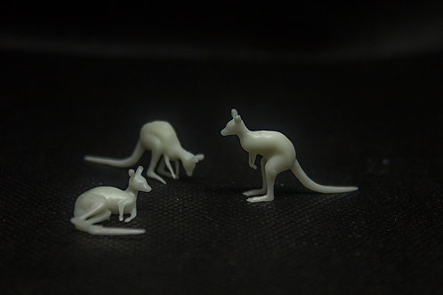 Kangaroo (3 pack)