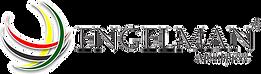 Logo Liso-transparente.png