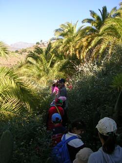 Campamento Escolar en Tirajana 2007.jpg