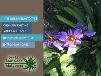 Barta Landscape Maintenance Mission