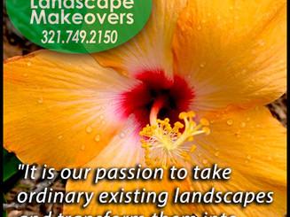 Barta Landscape Makeovers