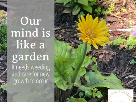 Our minds are like a garden