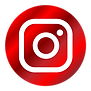In2Racing Social Media Icons-Instagram-L