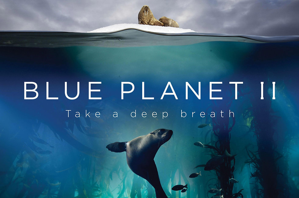 Blue Planet - The Attenborough Effect