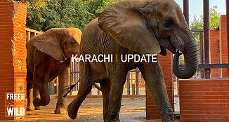 Large-karachi-update.jpg