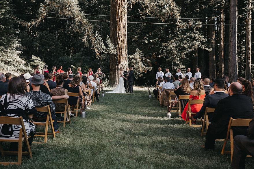 henrik ibsen park redwoods wedding