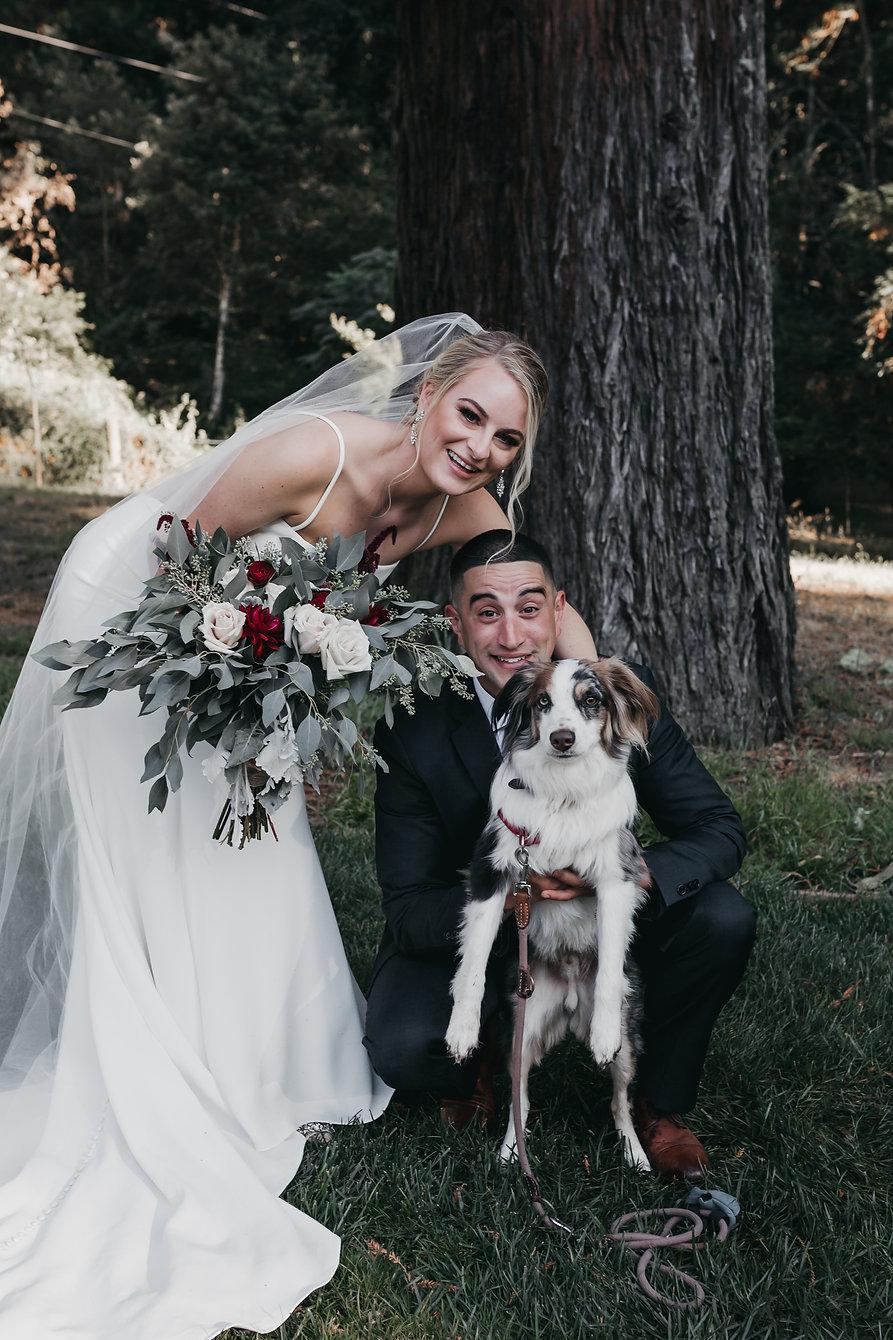 henrik ibsen park wedding bride and groom portraits