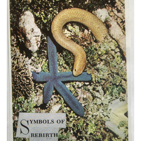 symbols of rebirth