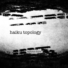 haiku topology