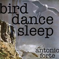 birddancesleep