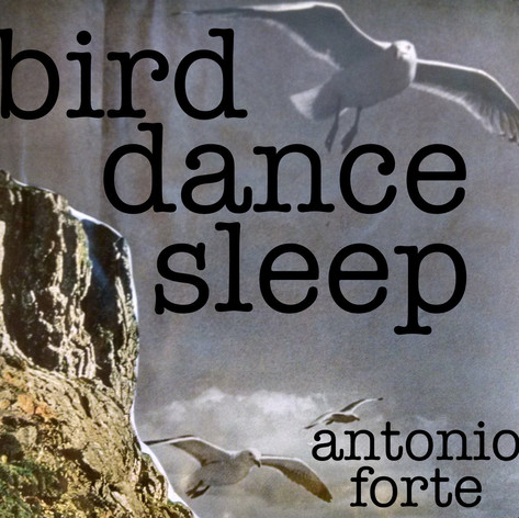 birddancesleep