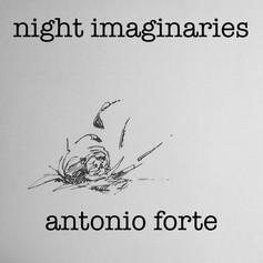 night imaginaries