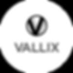 new vallix logo.png