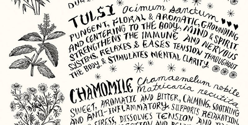 Tea and Infusions poster