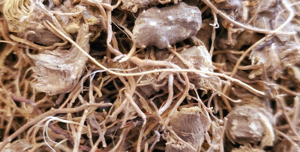 Organic Blue Cohosh Root