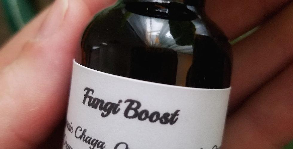 Fungi Boost Tincture