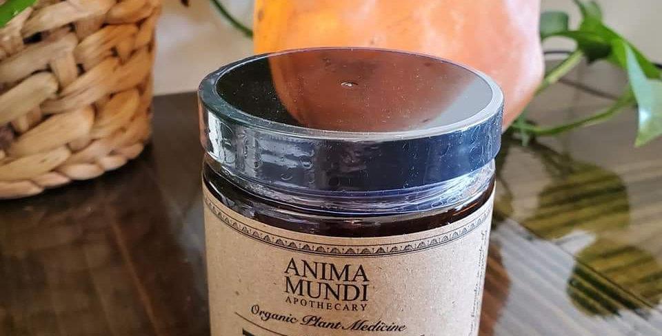Anima Mundi The Mind