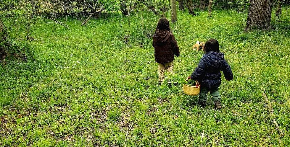 Kids Plant ID Scavenger Hunt