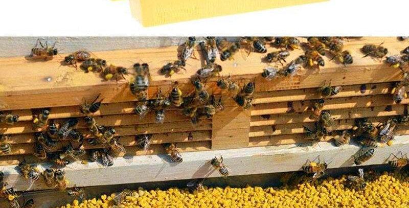 Local Bee Pollen 3oz