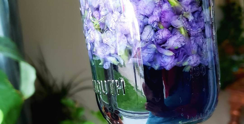 Violets & Herbal Honey!