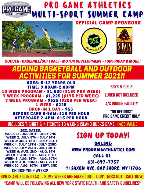 Summer Camp Basketball.png