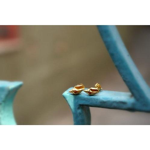Sea shell earrings 14k on sterling silver