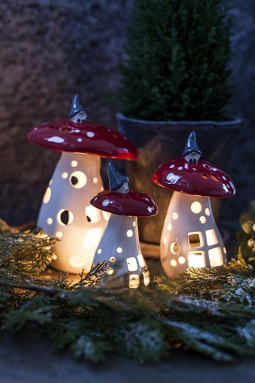 Lantern Gnome on Mushroom