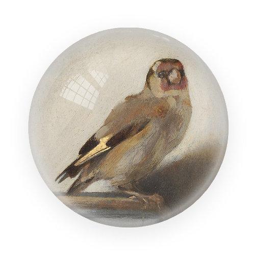 Goldfinch, Carel Fabritius - Paper Weight