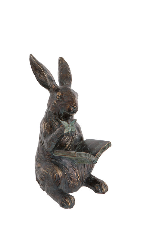 Hare with Book