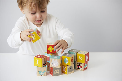 ABC Wooden Blocks (12months+)