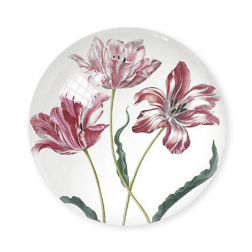 Tulips, Merian - Paper Weight