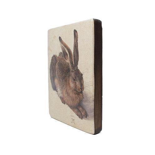 Dürer, Hare -Old Masters Wood block Painting