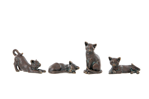 Cats - Set of 4