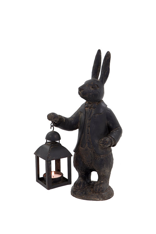 Hare with Lantern