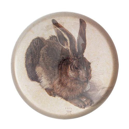 Dürer, Hare- Paper Weight