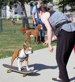 skateboard class.JPG