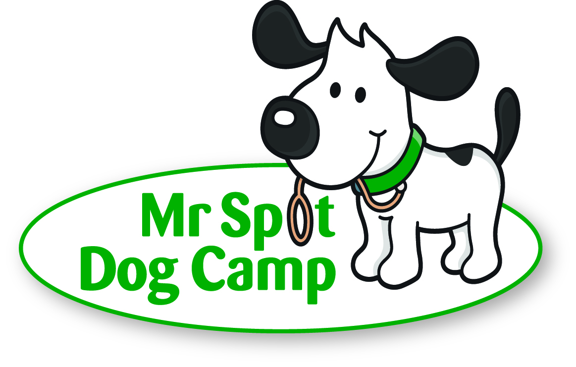 MrSpotDogCamp_logo_w-shadow.jpg
