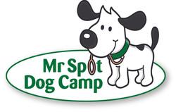 MrSpotDogCamp_logo_w-shadow.jpg