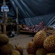 """Pasar Minggu. Jakarta, the """"big durian""""."""