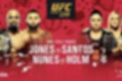 UFC-239-Poster.jpg