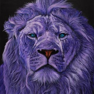 LION HEAD IN PURPLE