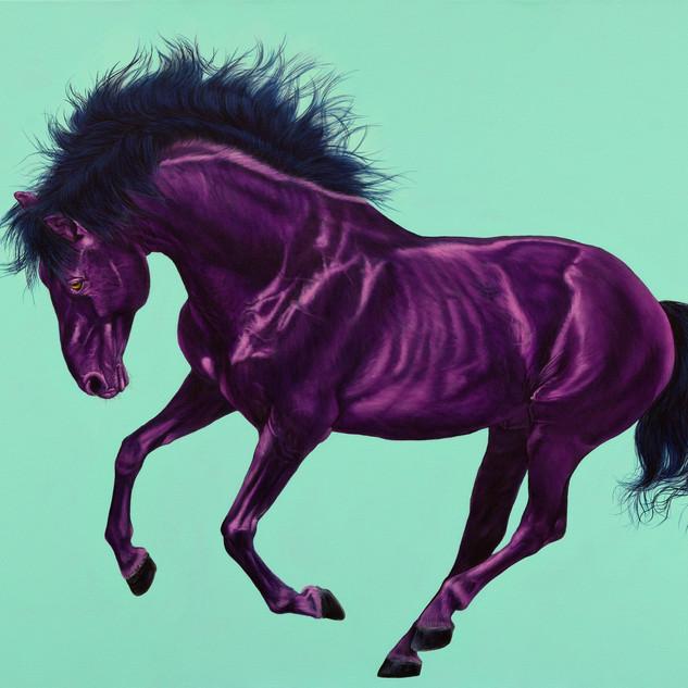 HORSE IN VIOLET