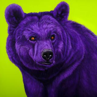 BEAR IN PURPLE